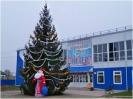 Спортивный комплекс Олимп ст. Троицкая